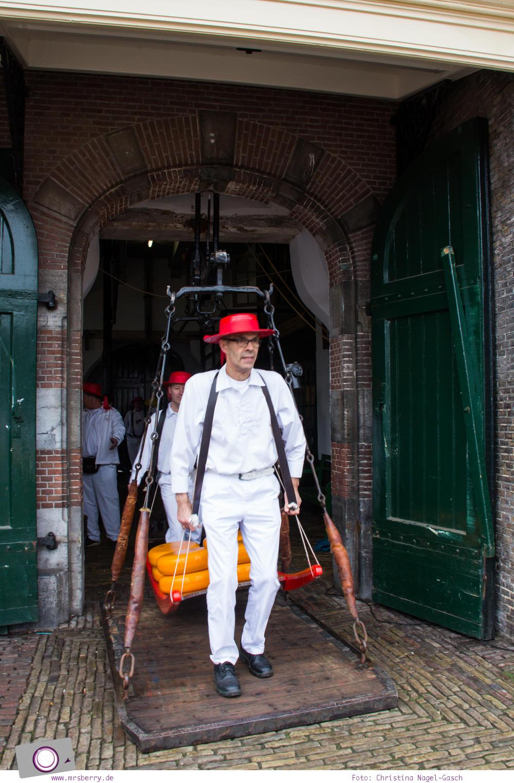 Käsemarkt in Alkmaar: Käseträger bringen den Käse vom Waagehaus zum Schubkarren
