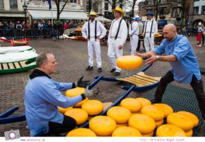 Käsemarkt in Alkmaar: Käse wird auf die Bahre verladen