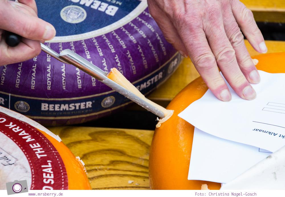Käsemarkt in Alkmaar: Käseprobe - aus dem Käse wird mit einem speziellen Käsebohrer eine Probe entnommen