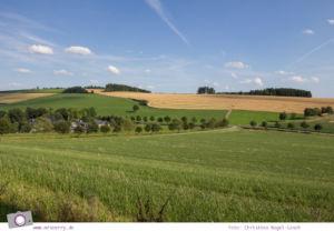 Urlaub im Sauerland - Familotel Ebbinghof in Schmallenberg: schönes, grünes Sauerland