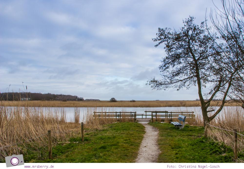 """Urlaub auf Texel mit Kind und Hund - Texel ist auf Platz 9 der Top 10 Reiseziele """"Best in Europe"""" vom Lonely Planet"""