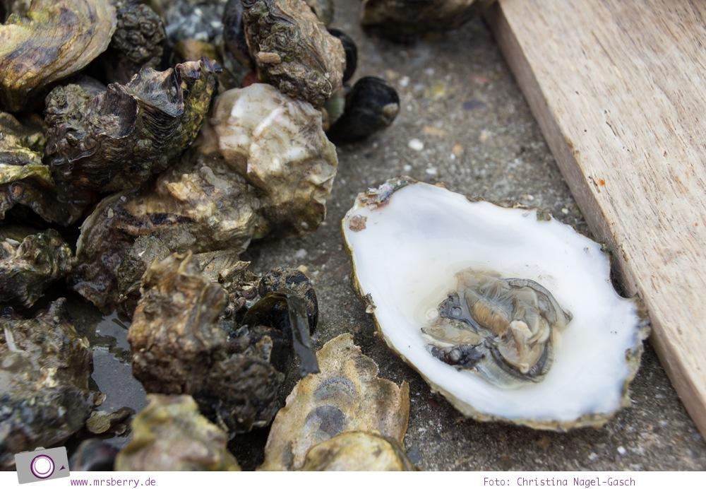 Urlaub auf Texel mit Kind und Hund - Austern sammeln auf Texel mit dem Austernmann