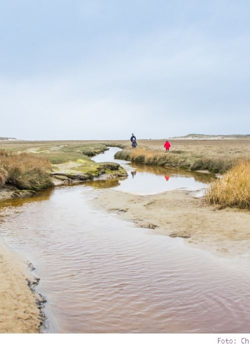 Was kann man auf Texel machen? 15 Tipps für Urlaub mit Kind und Hund (Holland) #2