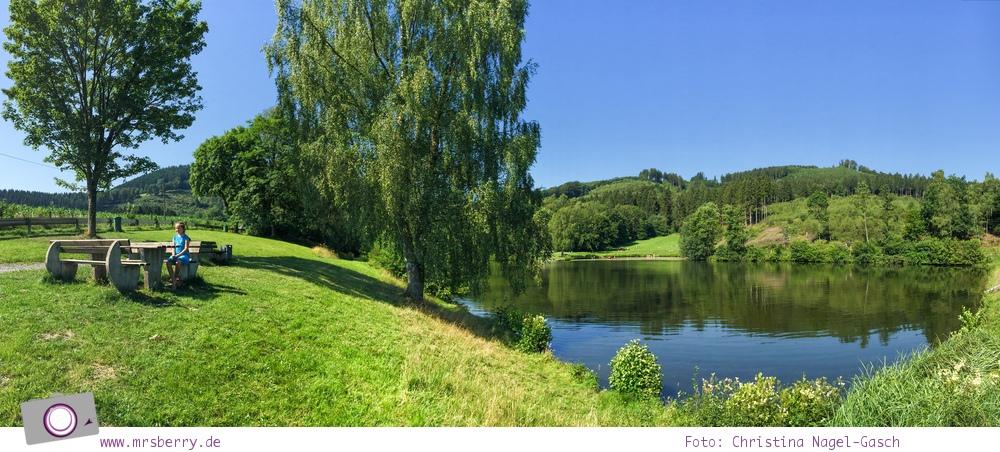 Die besten Ausflugsziele im Sauerland für Familien: Esmecke Stausee / Badesee
