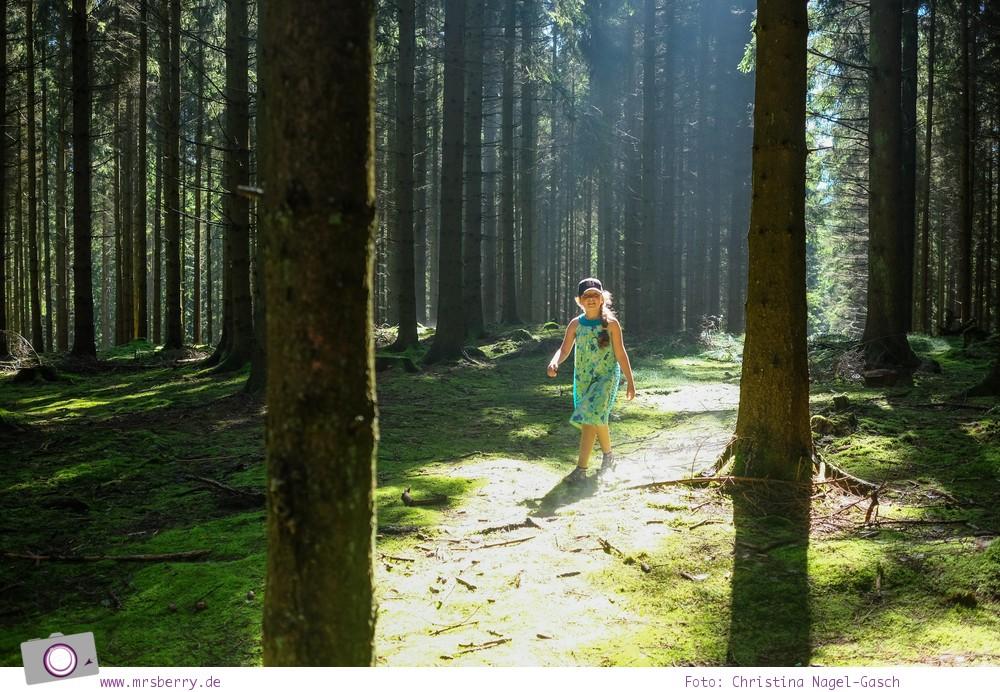 Biggesee im Sauerland - ein Tagesausflug mit Kind und Hund   Weg zur Aussichtsplattform Biggeblick