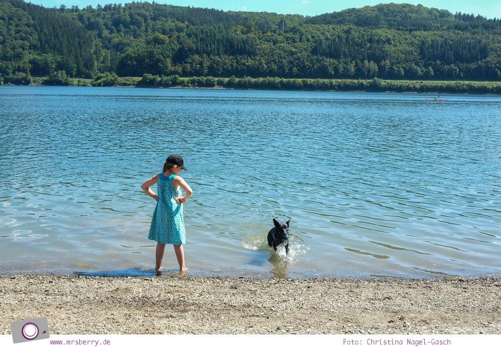 Biggesee im Sauerland - ein Tagesausflug mit Kind und Hund   Abkühlung am Biggesee