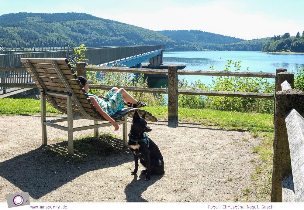 Biggesee im Sauerland - ein Tagesausflug mit Kind und Hund   Spaziergang entlang der Biggetalsperre