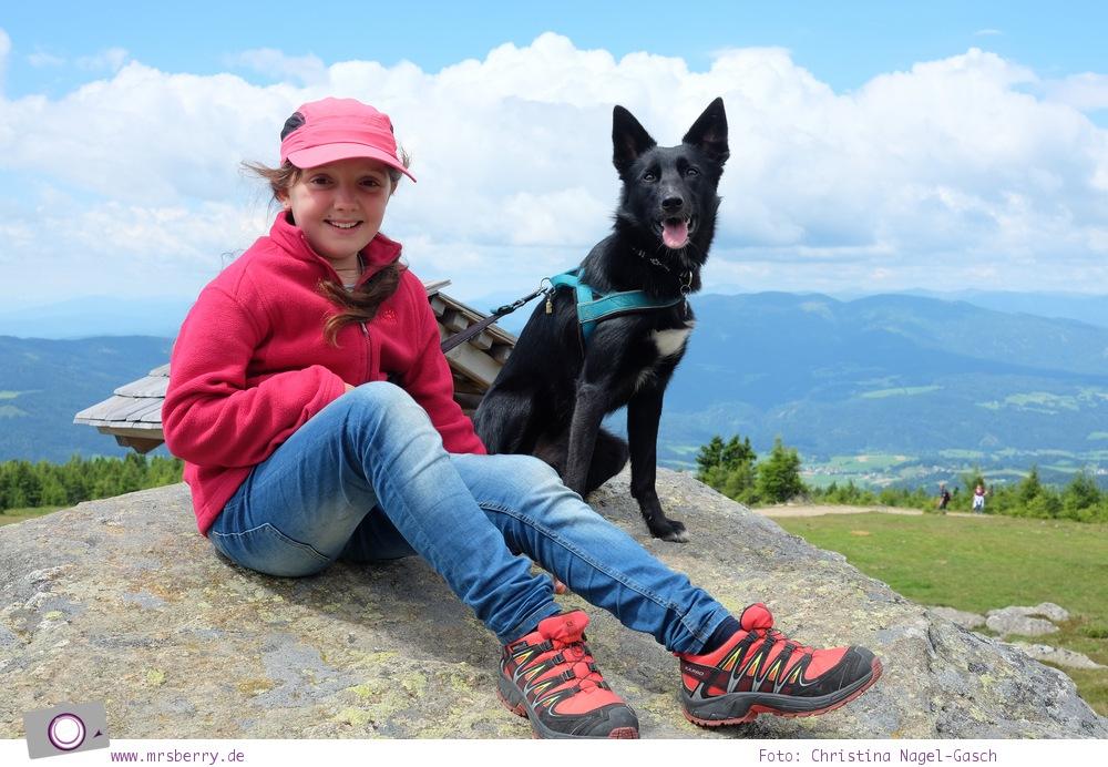 Leben mit Hund - 1 Jahr mit Maya #dogcontent
