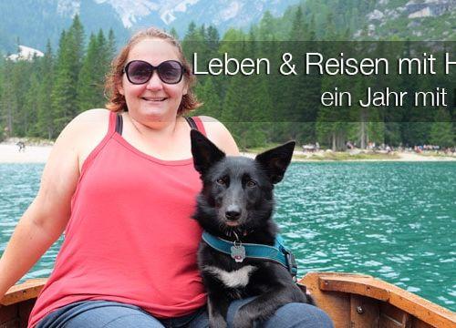 Leben und Reisen mit Hund – #dogcontent ein Jahr mit Maya