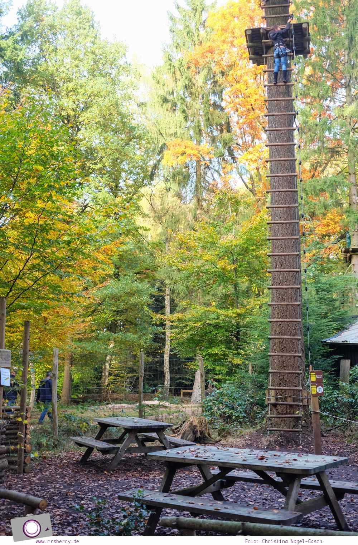 Das andere Holland - 48 Stunden in Gelderland: Klimbos Kletterpark Veluwe