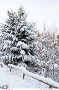 MrsBerry.de | Winter und Schnee in der Eifel: Rodeln am Michelsberg in Bad Münstereifel