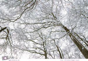 MrsBerry.de   Winter und Schnee in der Eifel: Rodeln am Michelsberg in Bad Münstereifel