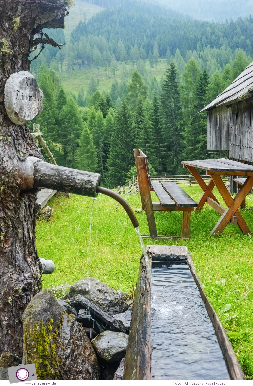 Familienurlaub in Kärnten - Feriendorf Kirchleitn mit Ranger Tagen für Kinder: Aussicht am Wegerstadl [Österreich, Wandern im Nockberge Nationalpark]