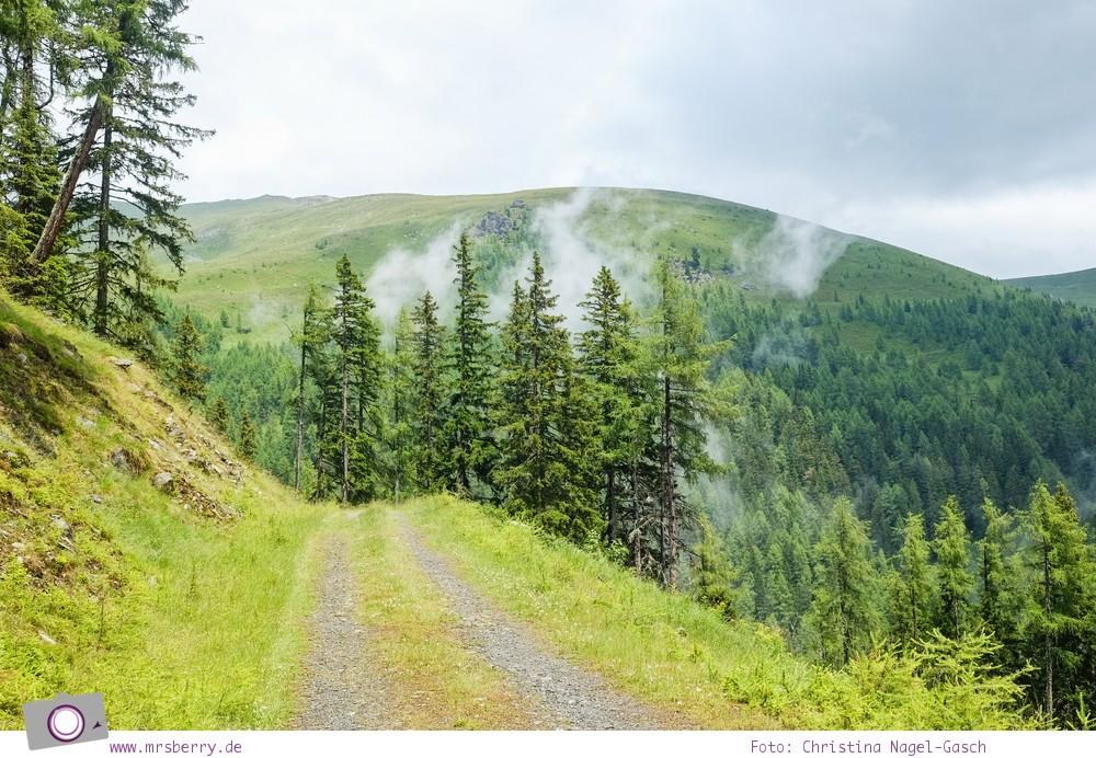 Familienurlaub in Kärnten - Feriendorf Kirchleitn mit Ranger Tagen für Kinder: auf Regen folgt Sonnenschein [Österreich, Wandern im Nockberge Nationalpark]
