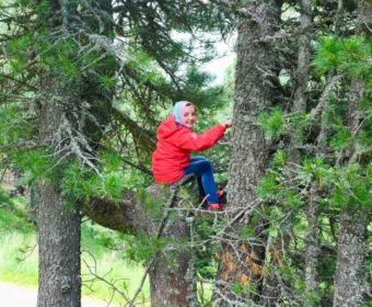 Steiermark mit Kind - Urlaub im Seehotel Jägerwirt auf der Turracher Höhe am Turracher See: Turracher 3-Seen Runde