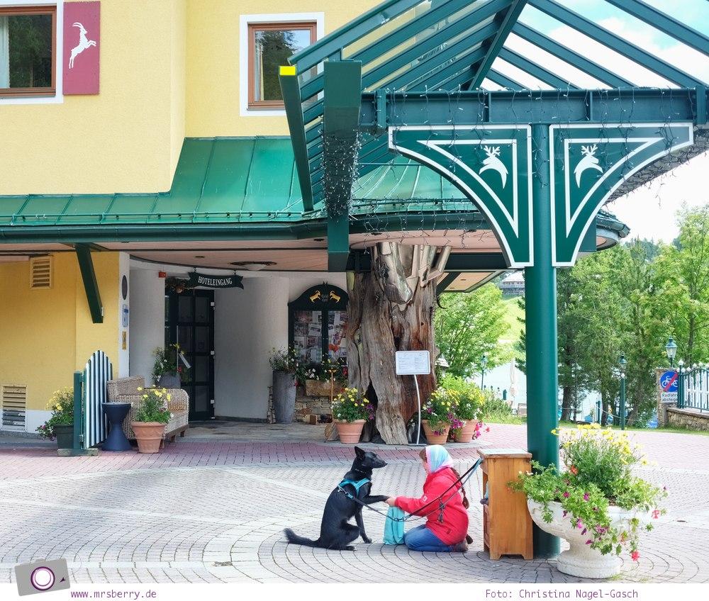 Steiermark mit Kind - Urlaub im Seehotel Jägerwirt auf der Turracher Höhe am Turracher See: Hundewaschplatz vorm Hotel
