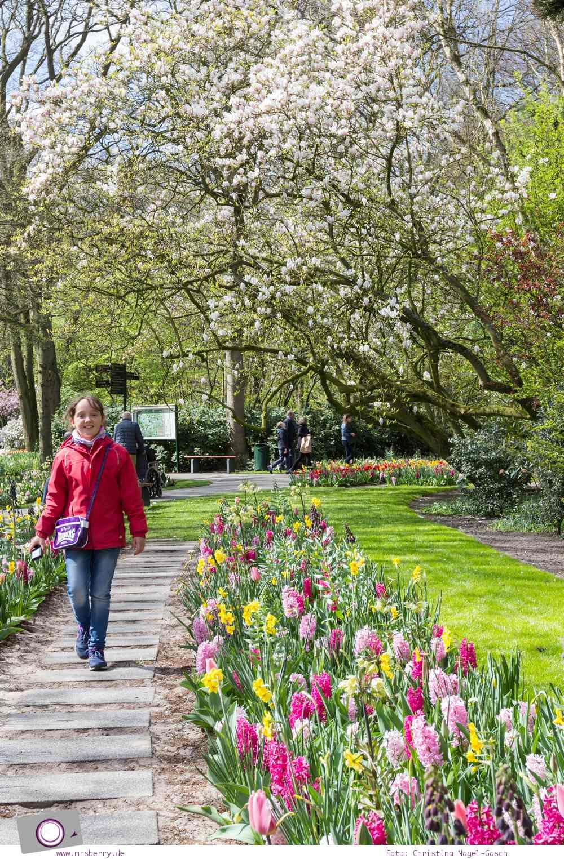 Tipps für ein Wochenende im Frühling in Holland mit Kind und Hund - vom Meer in Noordwijk und Tulpen im Keukenhof: ein Blumenmeer aus Tulpen, Narzissen und Hyazinthen im Keukenhof