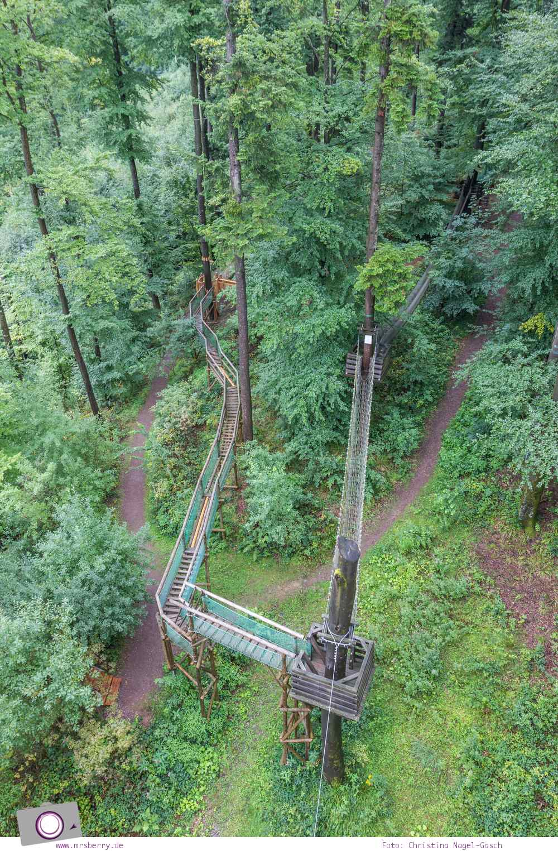 ZweiTälerLand im Schwarzwald: Familienausflug zum Baumkronenweg im Naturerlebnispark Waldkirch - der Abenteuerpfad von oben