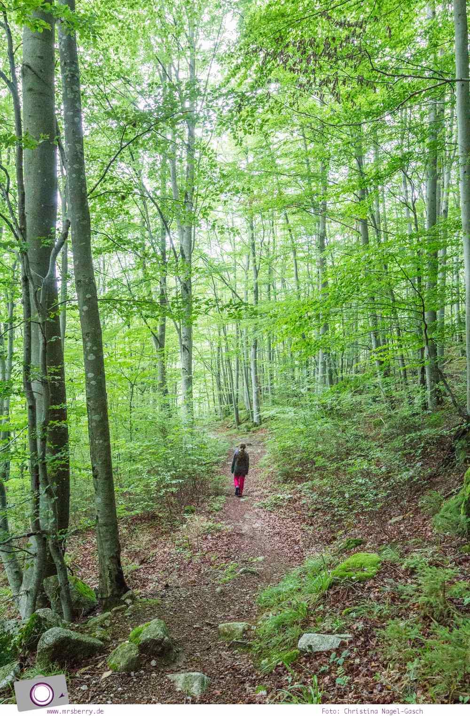 ZweiTälerLand im Schwarzwald: Wandern mit Kind zu den Siebenfelsen.