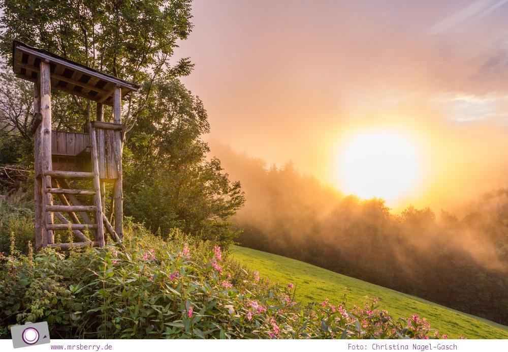 ZweiTälerLand im Schwarzwald: nach dem Regen folgt Sonnenschein und das erzeugt diese wunderschöne Stimmung im Abendlicht