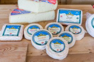Bauernhofurlaub in Südtirol mit Roter Hahn | Hochgruberhof | Reisebericht MrsBerry Familienblog & Reiseblog