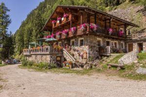 Bauernhofurlaub in Südtirol mit Roter Hahn   Kofler zwischen den Wänden   Reisebericht MrsBerry Familienblog & Reiseblog