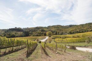 Toskana Urlaub in den Hügeln des Chianti Classico und die schönsten Ausflugsziele im Chianti Gebiet - Wandern durch die Hügel der Chianti Region