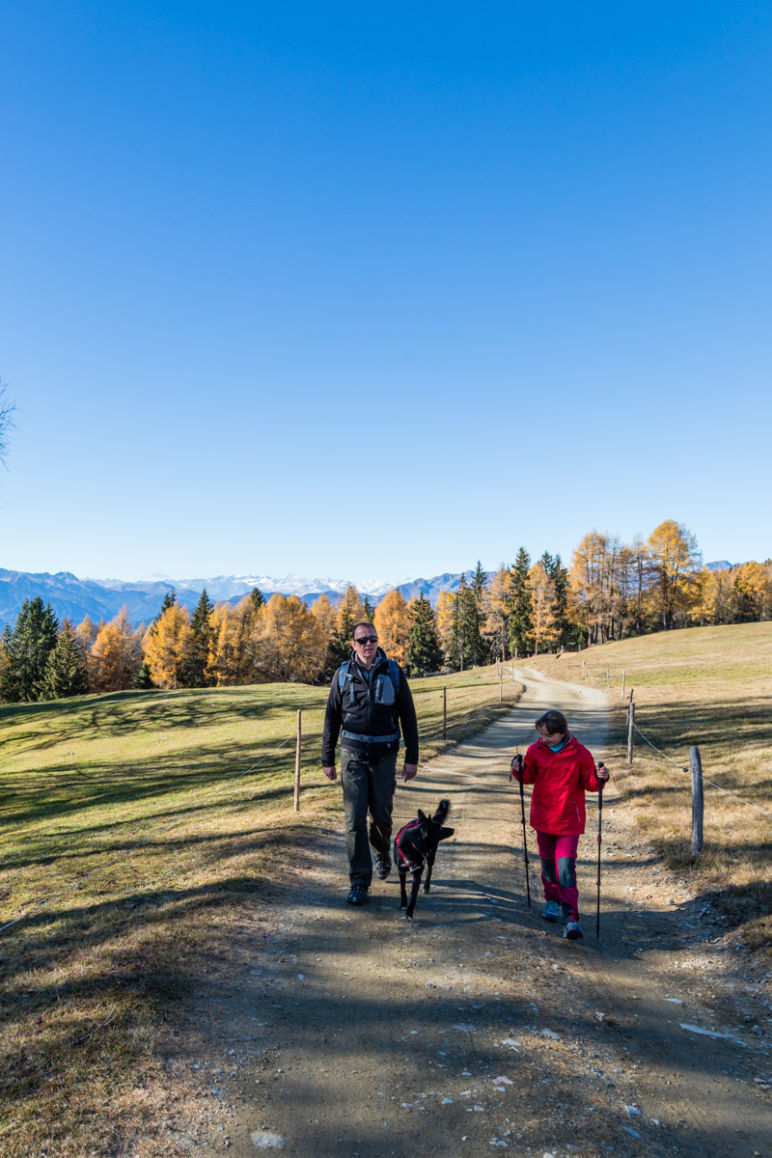 Naturhotel Lüsnerhof - Wellness und Wandern in Südtirol | Wandern mit Kind in den Dolomiten zur Kreuzwiesenalm