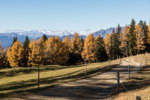 Naturhotel Lüsnerhof - Wellness und Wandern in Südtirol | Wandern mit Kind von Lüsen zur Kreuzwiesenalm