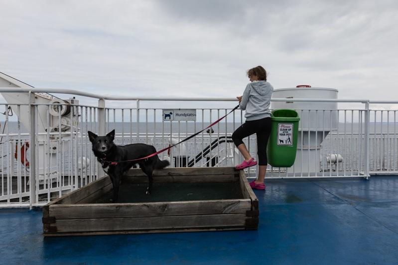 Skandinavien Roadtrip: Fähre Deutschland - Schweden, mit Finnlines von Travemünde nach Malmö mit Kind und Hund