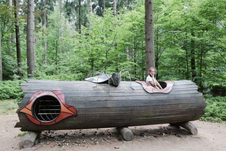 Sächsische Schweiz: Familienurlaub in Hinterhermsdorf - Nationalpark Wandertour durch die Waldhusche für Familien