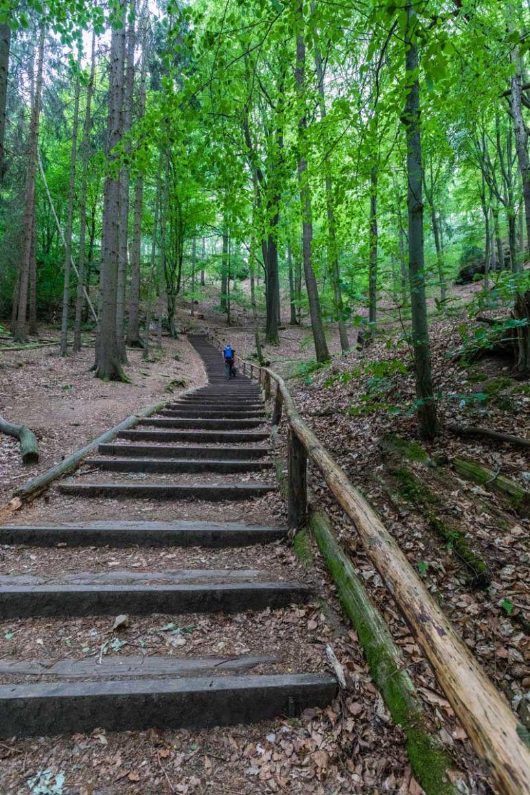 Sächsische Schweiz: Familienurlaub in Hinterhermsdorf - Nationalpark Wanderung Schwedenlöcher und Bastei