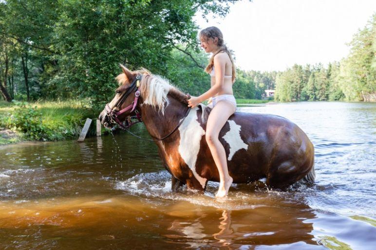 Skandinavien Roadtrip: 3 coole Familienspots in Smaland, Schweden - Ferienanlage Kyrkekvarn - Reiterferien mit Pferd am Haus.